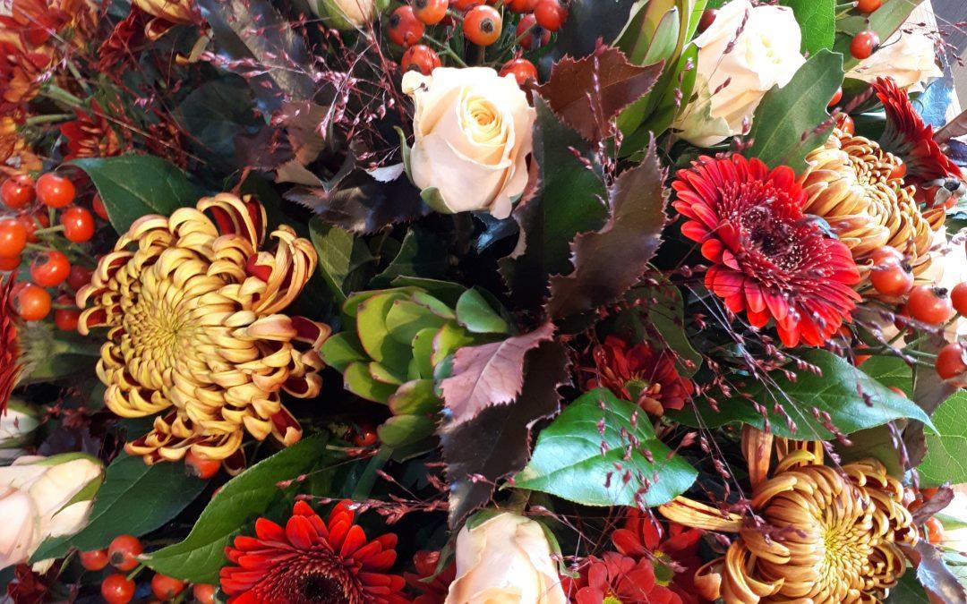 Het leven vieren op een zonnige herfstdag in Hoogeveen.